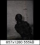 dsc_0128uaf9.jpg