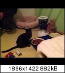 [Bild: mobile.88j2uc9.jpg]