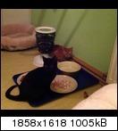 [Bild: mobile.890vutg.jpg]