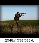 s63031561qij.jpg