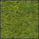 Kreuzung - Texturen verdunkelt InGame - Seite 2 Grass0026_11_swkjzd