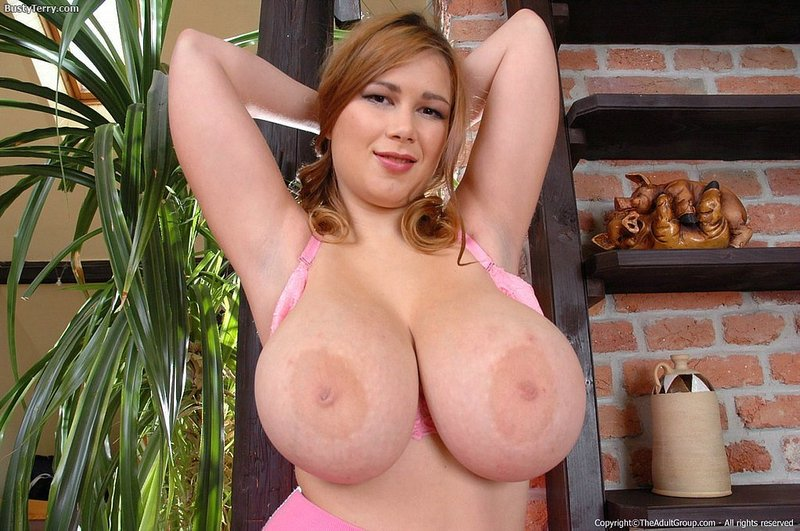 Terry Nova Free Porn Forum 10
